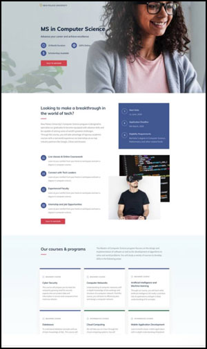 landing pages that convert example